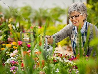 Mature woman watering flowers