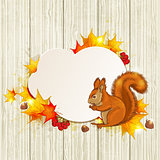 Fluffy squirrel and maple leaves
