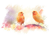 Yellow Birds Watercolor