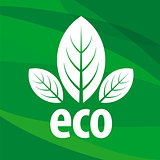 eco vector logo in the form of leaf