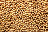 Soya beans, or soybeans background