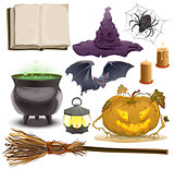 Set Halloween objects accessories. Pumpkin ,lantern, hat, broom, cauldron, spider, bat and old book