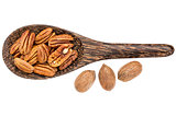 pecan nuts on wooden spoon