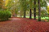 Racconigi park in autumn.