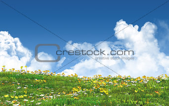 3D landscape with buttercups and daisies