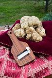 White truffles from Piedmont