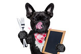 hungry dog  with blackboard
