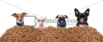group of dogs behind mound food