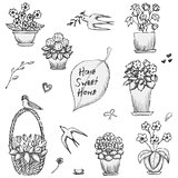 Hand drawn indoor plants, flowers in vases and swallows sketch