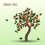 Orange tree with fruits oranges