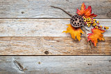 barn wood  background with fall decoration