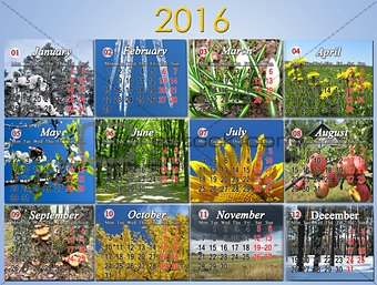 calendar for 2016 in English with photo for every month