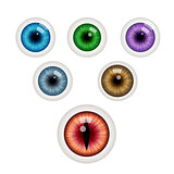 Set of colorful eye balls. Vector illustration.