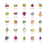 Fruit icons set. Colorful design.