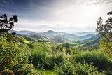 View on Carpathian mountains