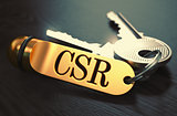 CSR - Bunch of Keys with Text on Golden Keychain.