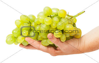 Bright grapes lying in hand