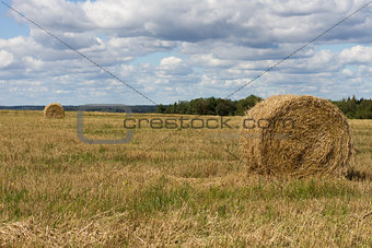Agriculture straw gathered into a sheaf field harvest sky