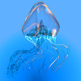 Blue Glowing Jellyfish