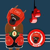 Vector Set Symbols Boxing