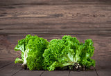 Fresh leaves lettuce on wooden board