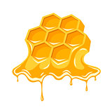 Honey flowing of bee honeycombs