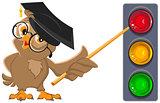 Owl Teacher shows pointer on lights. Traffic light education