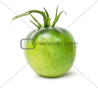 Single green tomato