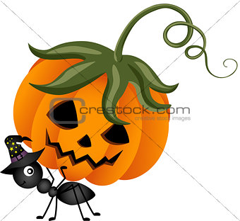 Ant Carrying a Halloween Pumpkin