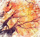 Autunm Trees Watercolor