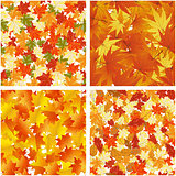 Autumn  Seamless Pattern Set