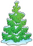 Coniferous tree theme image 1