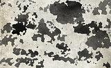 Grey watercolor background.