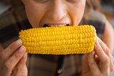Closeup of woman biting into fresh, crunchy, sweet corncob