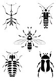 Art insect illustration set