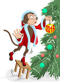 Santa monkey hangs on the Christmas tree ball in 2016