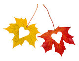 Autumn_Love