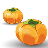 Set of Two Glossy Orange Permisson