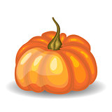 Glossy Orange Pumpkin