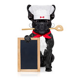 chef cook dog