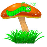 Mushroom with a caterpillar in the grass