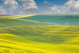 Landscape of colorful hills, springtime beautiful day
