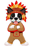 Native American Boston Terrier