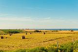 PEI rural scene