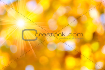 Autumn abstract, fall season background with a magic sun lights