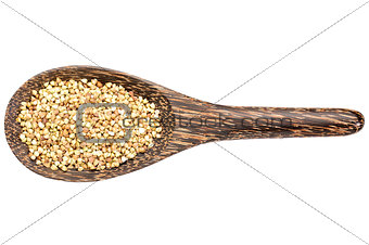 gluten free buckwheat pseudograin
