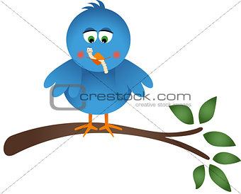 Blue Bird Eating a Worm