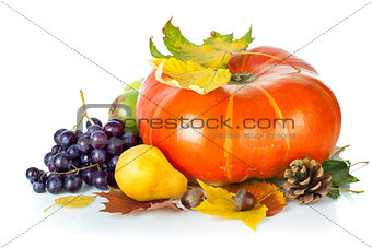 Autumnal still life with pumpkin and grapes