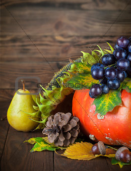 Autumnal still life with pumpkin and grapes on wooden board