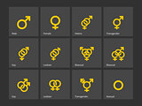 Gender and sexual orientation icons.